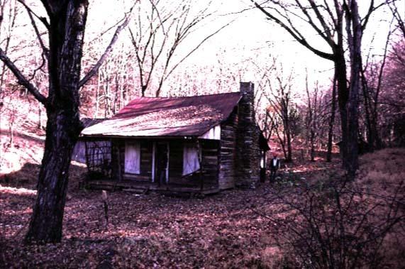 La casa nei boschi del film La casa di Sam Raimi