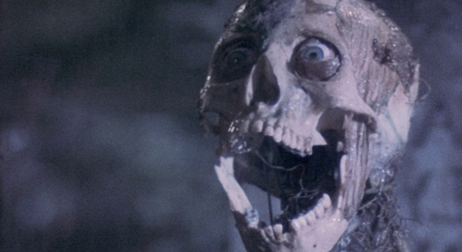 scheletro finale dei titoli di coda di Il ritorno dei morti viventi (1985)