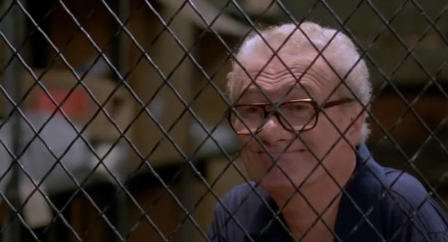 Ralph Foody in Nico, Above the Law del 1988